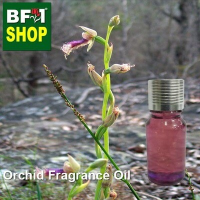 Orchid Fragrance Oil-Beards [Brown ] (Australia) > Calochilus robertsonii-10ml