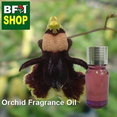 Orchid Fragrance Oil-Bee (Bumble-bee) orchid > Oncidium henekenii-10ml