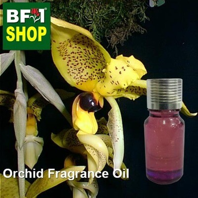 Orchid Fragrance Oil-Beetles (Cucarrones) > Stanhopea-10ml