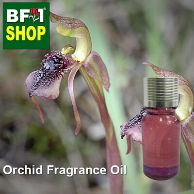 Orchid Fragrance Oil-Bird orchid [Autumn] (Australia) > Chiloglottis reflexa-10ml