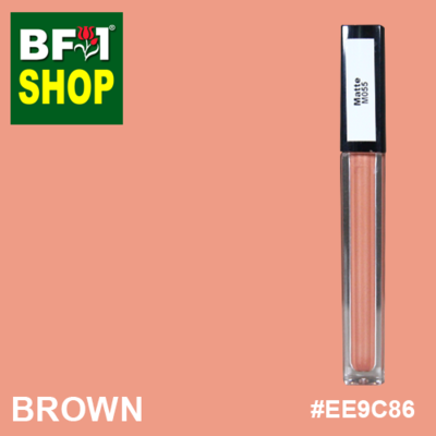 Shining Lip Matte Color - Brown #EE9C86 - 5g