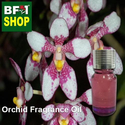 ORchid Fragrance Oil-Ravine orchid (Australia) > Sarcochilus fitzgeraldii-10ml