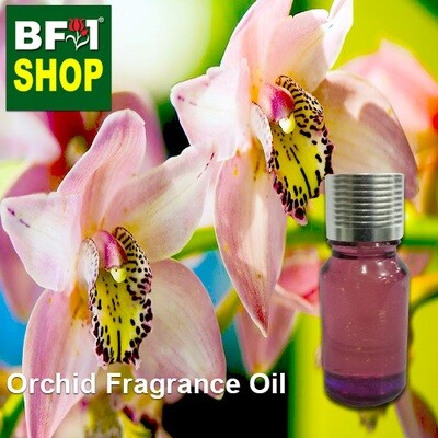 Orchid Fragrance Oil - Spring orchid [Broad leaf] (China) > Cymbidium tsukergensis-10ml