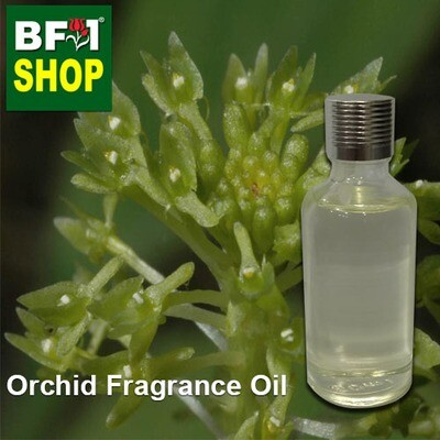 Orchid Fragrance Oil-Adder's-mouth [Green] > Malaxis uniflora-50ml