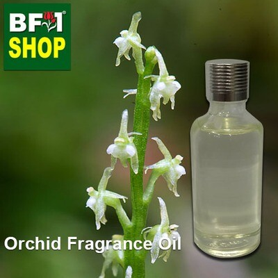 Orchid Fragrance Oil-Adder's-mouth [Narrow] > Malaxis monophyllos var. brachypoda-50ml