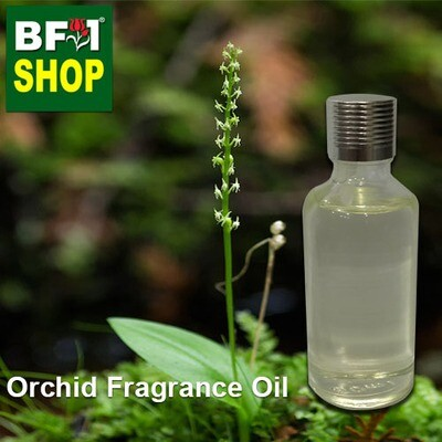 Orchid Fragrance Oil-Adder's-mouth [Tenderwort] > Malaxis monophyllos var. brachypoda-50ml