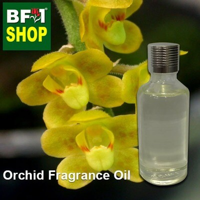 Orchid Fragrance Oil-Angel without leaves > Chilochista-50ml