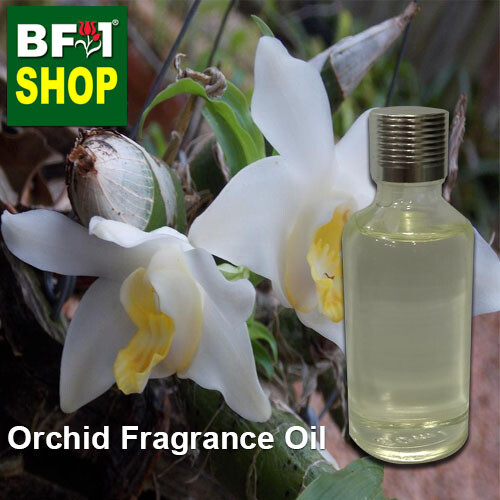 Orchid Fragrance Oil-Baby orchid > Chysis-50ml