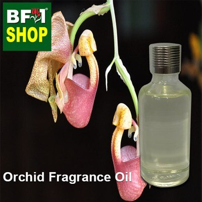 Orchid Fragrance Oil-Bat orchid > Coryanthes speciosa-50ml
