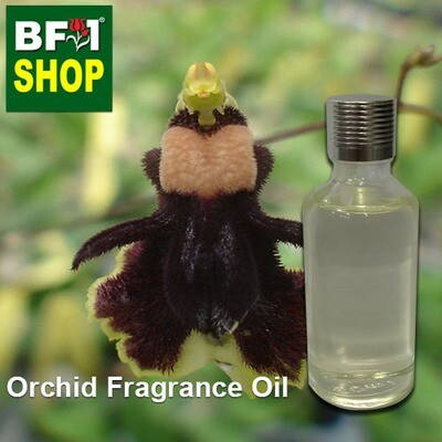 Orchid Fragrance Oil-Bee (Bumble-bee) orchid > Oncidium henekenii-50ml
