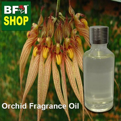 Orchid Fragrance Oil-Bearded bulbophylllum (Australia) > Bulbophyllum barbigerum-50ml