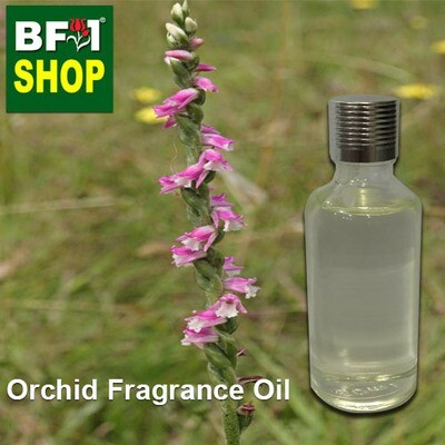 Orchid Fragrance Oil-Austral Ladies' Tresses (Australia) > Spiranthes sinensis-50ml
