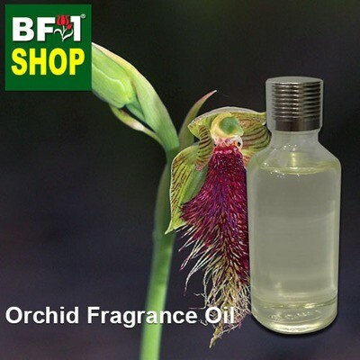 Orchid Fragrance Oil-Beardie [Great] (Australia) > Calochilus grandiflora-50ml