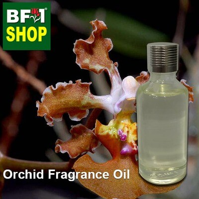 Orchid Fragrance Oil-Bee swarm orchid > Oncidium luridum (inv.) (altissimum)-50ml