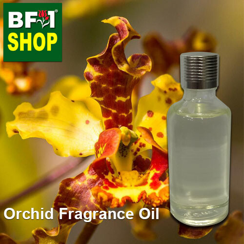 Orchid Fragrance Oil-Bee swarm orchid > Cyrtopodium punctatum-50ml