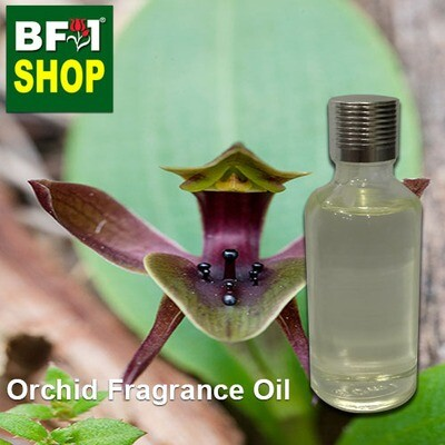 Orchid Fragrance Oil-Bird orchid [Large] (Australia) > Chiloglottis gunnii-50ml