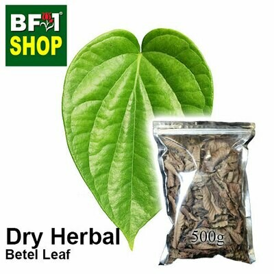Dry Herbal - Betel Leaf ( Daun Sireh ) - 500g