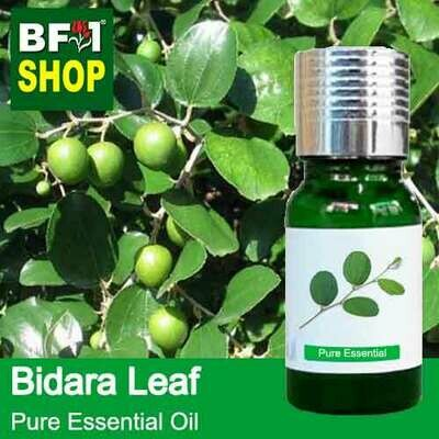 Pure Essential Oil (EO) - Bidara Leaf (Zizyphus Mauritiana ) Essential Oil - 10ml