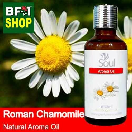 Natural Aroma Oil (AO) - Chamomile - Roman Chamomile Aroma Oil  - 50ml