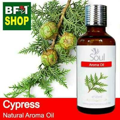 Natural Aroma Oil (AO) - Cypress Aroma Oil  - 50ml