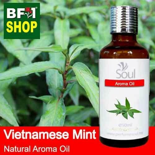 Natural Aroma Oil (AO) - Mint - Vietnamese Mint ( Persicaria Odorata ) Aroma Oil  - 50ml