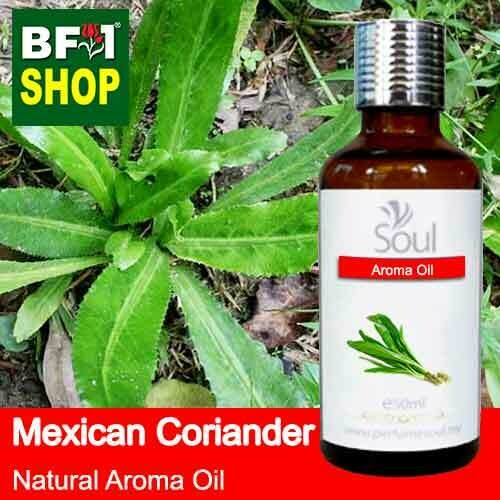 Natural Aroma Oil (AO) - Mexican Coriander ( Eryngium Foetidum ) Aroma Oil  - 50ml