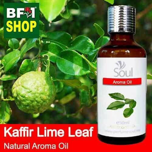 Natural Aroma Oil (AO) - Lime - Kaffir Lime Leaf Aroma Oil  - 50ml