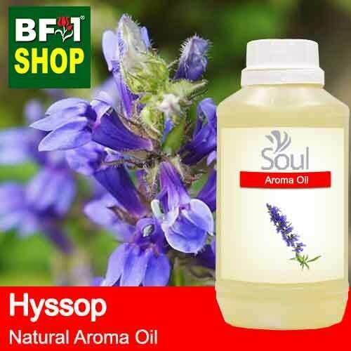 Natural Aroma Oil (AO) - Hyssop Aroma Oil  - 500ml