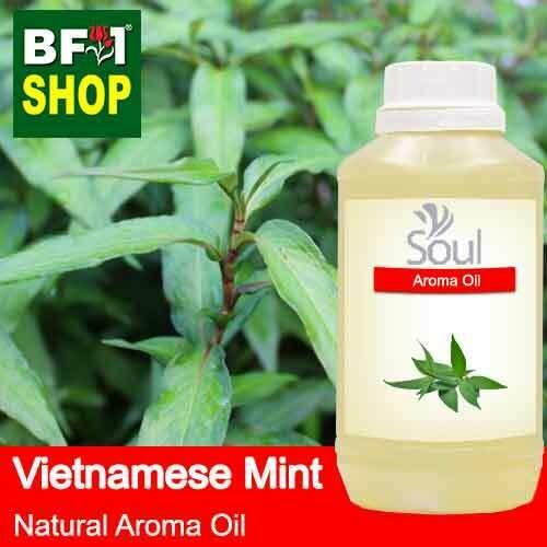 Natural Aroma Oil (AO) - Mint - Vietnamese Mint ( Persicaria Odorata ) Aroma Oil  - 500ml