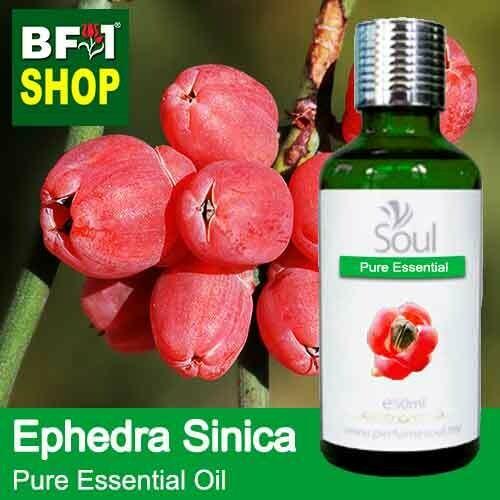 Pure Essential Oil (EO) - Ephedra Sinica Essential Oil - 50ml