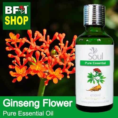 Pure Essential Oil (EO) - Ginseng Flower Essential Oil - 50ml
