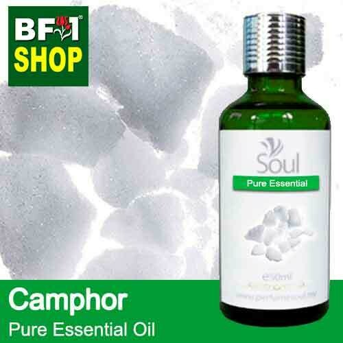 Pure Essential Oil (EO) - Camphor Essential Oil - 50ml