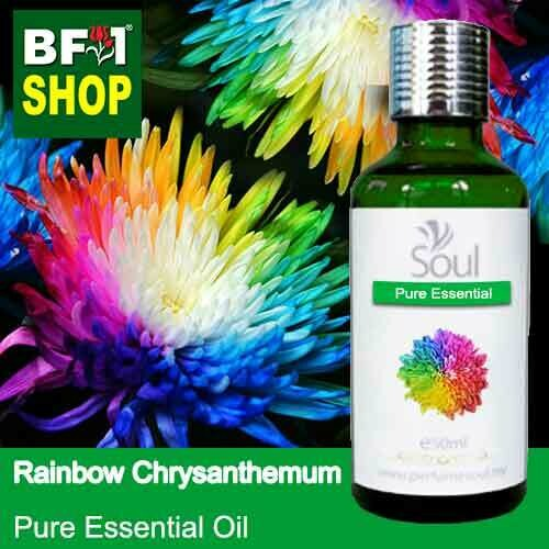 Pure Essential Oil (EO) - Chrysanthemum - Rainbow Chrysanthemum Essential Oil - 50ml