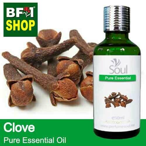 Pure Essential Oil (EO) - Clove Essential Oil - 50ml