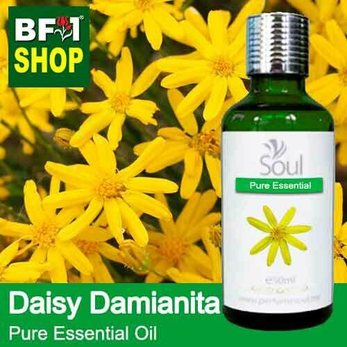 Pure Essential Oil (EO) - Daisy Damianita ( Chrysactinia Mexicana ) Essential Oil - 50ml