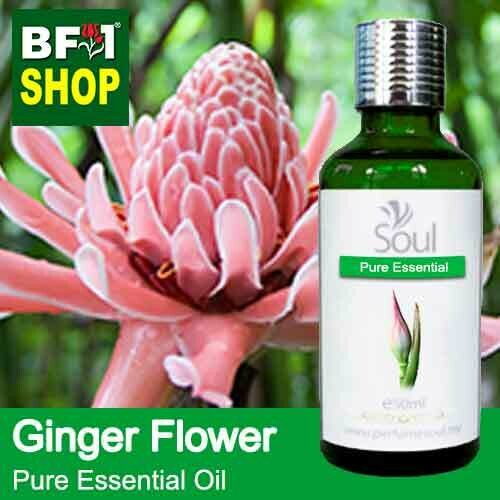 Pure Essential Oil (EO) - Ginger Flower Essential Oil - 50ml
