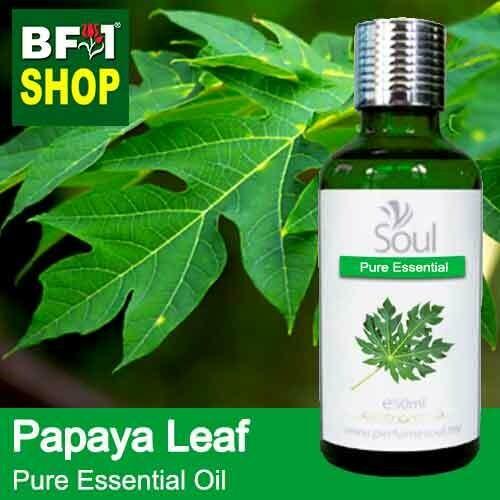 Pure Essential Oil (EO) - Papaya Leaves Essential Oil - 50ml