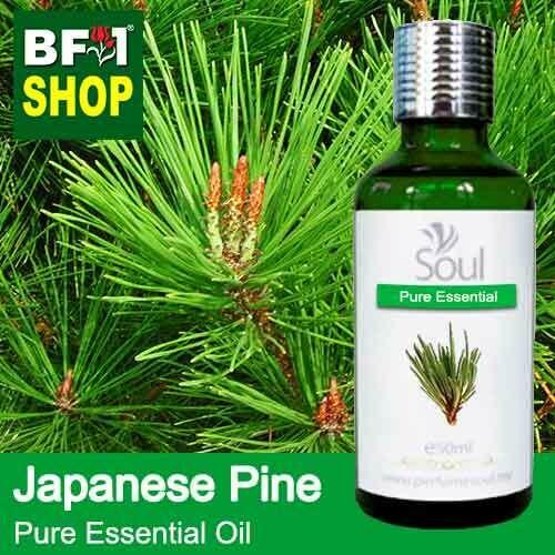 Pure Essential Oil (EO) - Pine - Japanese Pine Essential Oil - 50ml