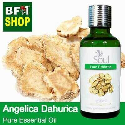 Pure Essential Oil (EO) - Angelica Dahurica Essential Oil - 50ml