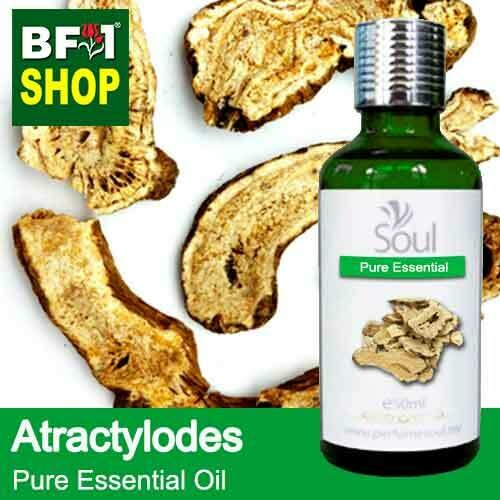 Pure Essential Oil (EO) - Atractylodes Essential Oil - 50ml