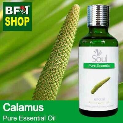 Pure Essential Oil (EO) - Calamus Essential Oil - 50ml