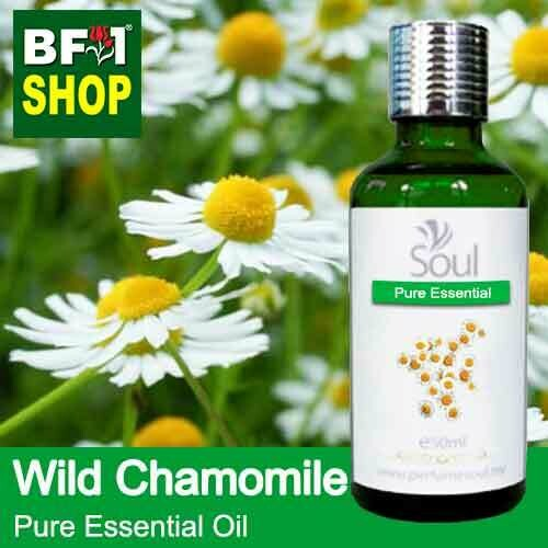 Pure Essential Oil (EO) - Chamomile - Wild Chamomile Essential Oil - 50ml
