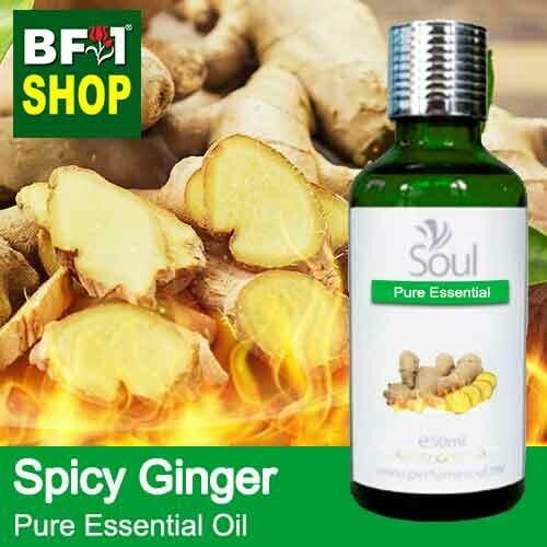 Pure Essential Oil (EO) - Ginger - Spicy Ginger Essential Oil - 50ml