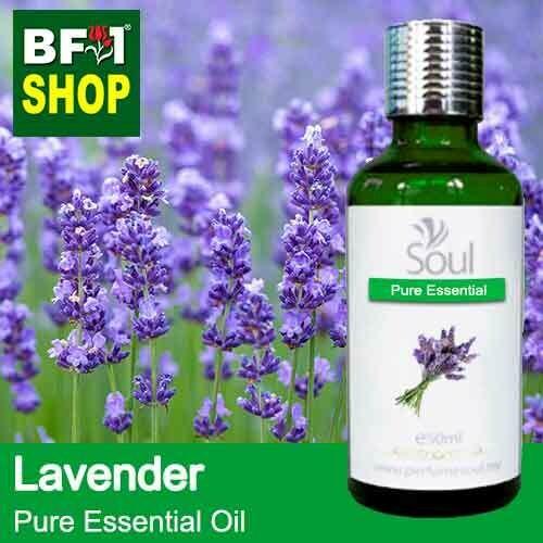 Pure Essential Oil (EO) - Lavender Essential Oil - 50ml