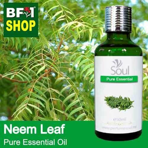 Pure Essential Oil (EO) - Neem Leaf Essential Oil - 50ml