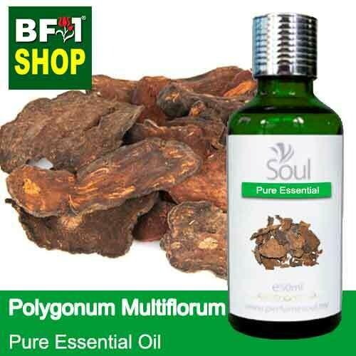 Pure Essential Oil (EO) - Polygonum Multiflorum Essential Oil - 50ml