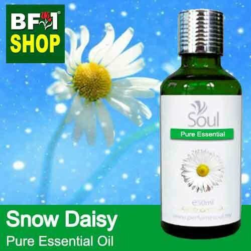 Pure Essential Oil (EO) - Snow Daisy Essential Oil - 50ml