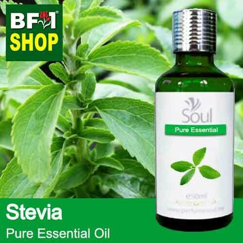 Pure Essential Oil (EO) - Stevia ( Stevia Rebaudiana ) Essential Oil - 50ml