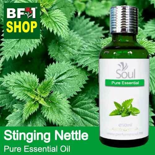 Pure Essential Oil (EO) - Stinging Nettle Essential Oil - 50ml