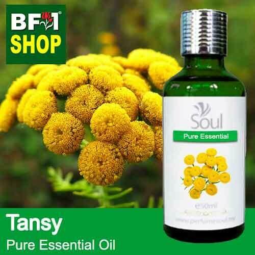 Pure Essential Oil (EO) - Tansy Essential Oil - 50ml